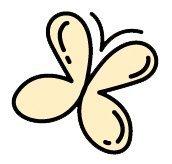 iconbfly