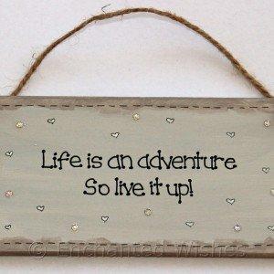 lifeisadventure2