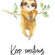 sloth_keepsmiling